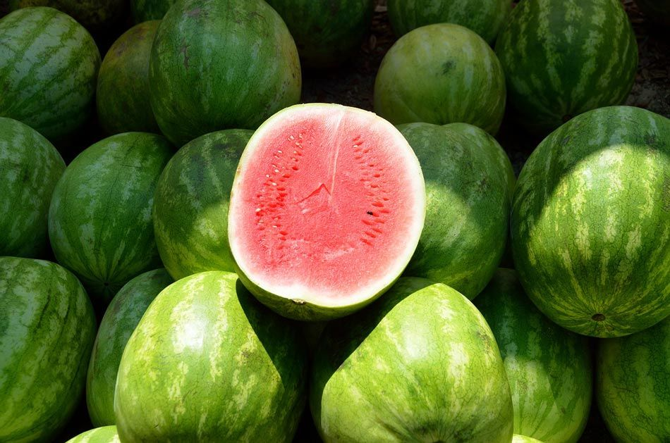 how many calories are in watermelon