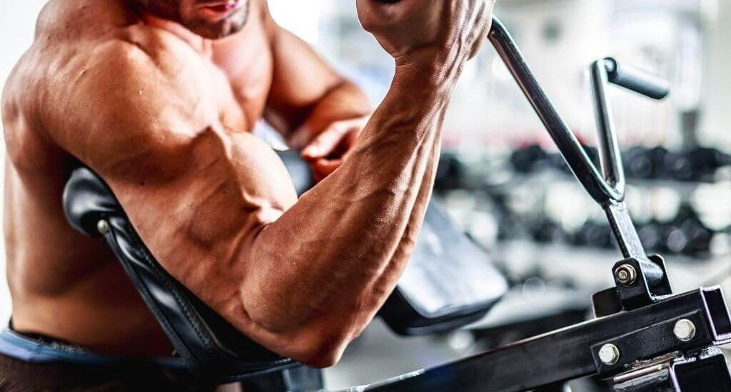 biceps vs triceps