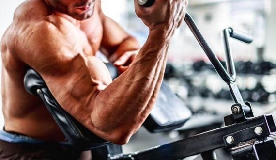 Biceps vs Triceps – Which Is More Important To Train?